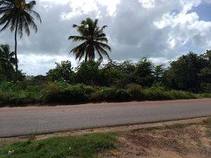 Área / Terreno em Pium RN 313 - Pium NISIA FLORESTA